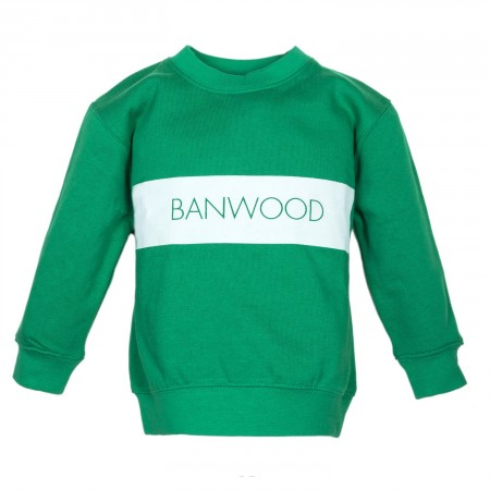 green sweatshirt for kids