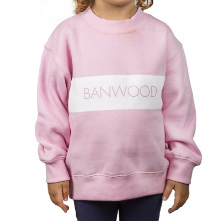 pink sweatshirt for kids